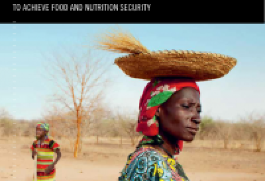Global Hunger Index Calls for Greater Resilience-Building Efforts to Boost Food and Nutrition Security