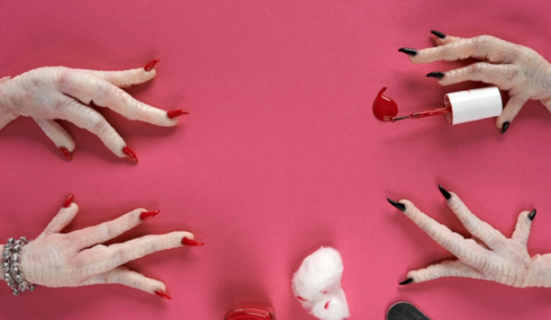 Surreal Food Photos Shows Animal Feet in Whimsical Activities