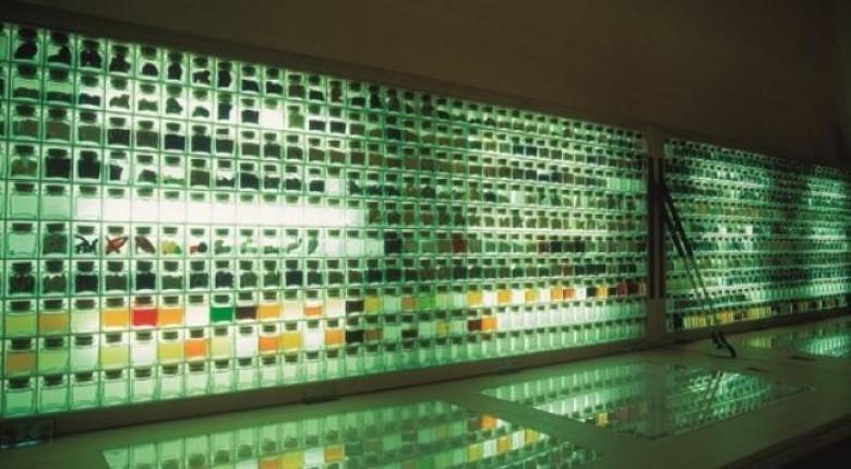 """""""Bullipedia"""" Lab to open in Barcelona"""