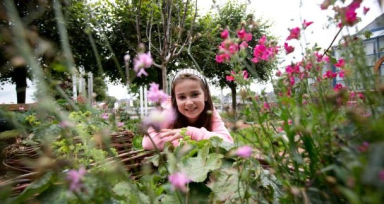 Garden grows interest in medieval Limerick
