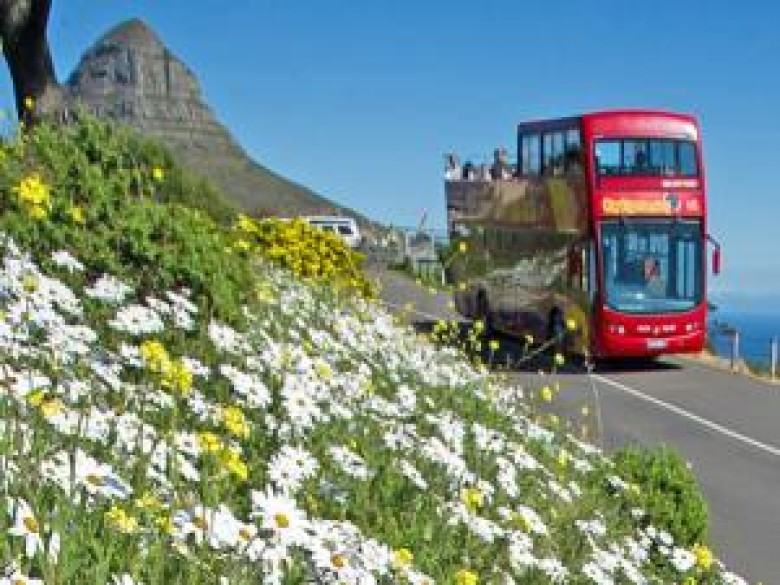 Tourism goes local in the Mother City
