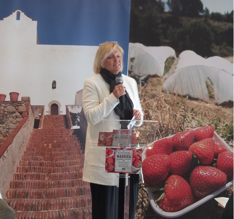 IGCAT invited to speak at the opening of the Vallalta Strawberry Fair