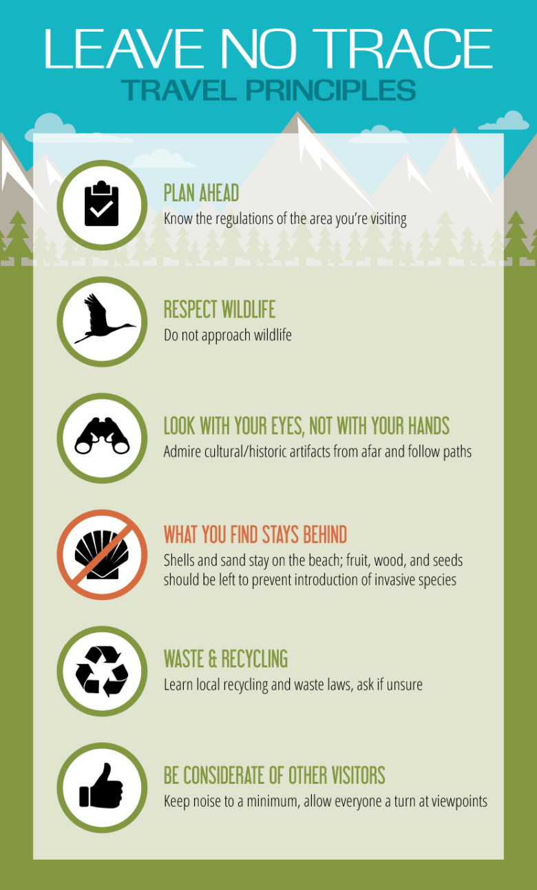 Sustainable Travel Guide:  Make sure your next trip is a green one!