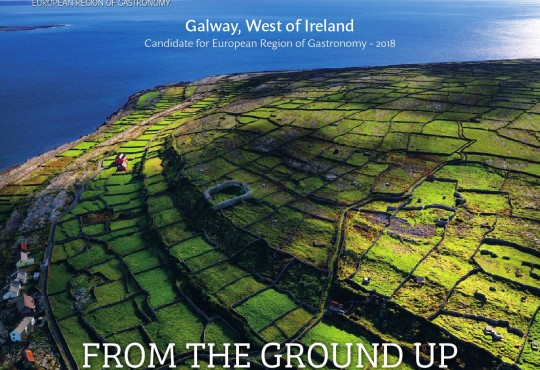 Galway 2018 – Feeding our future