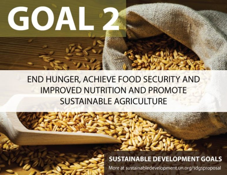 FAO conference ends with call for better nutrition, sustainable agriculture