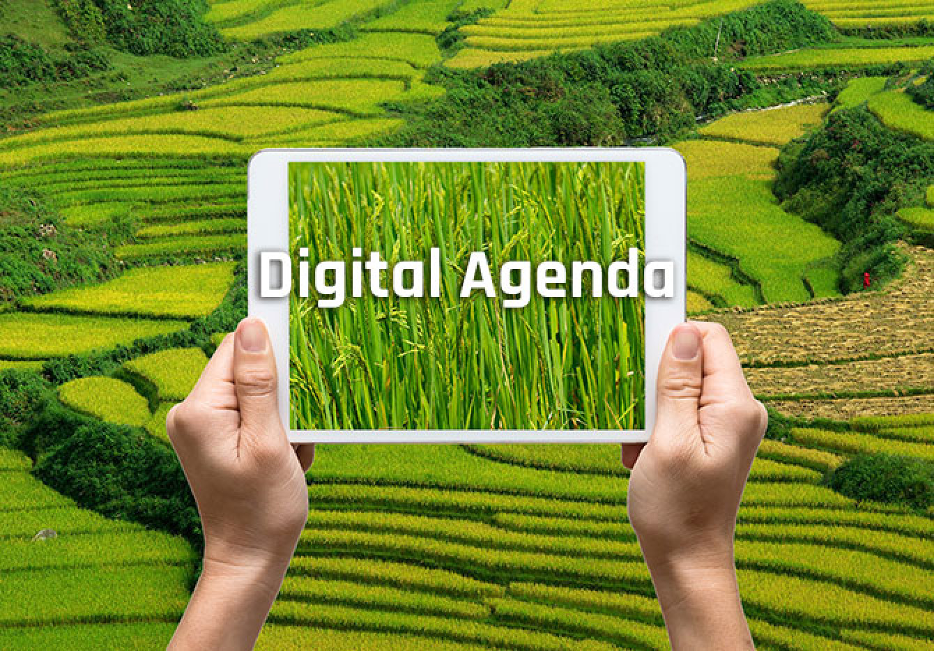 Digital_agenda.jpg