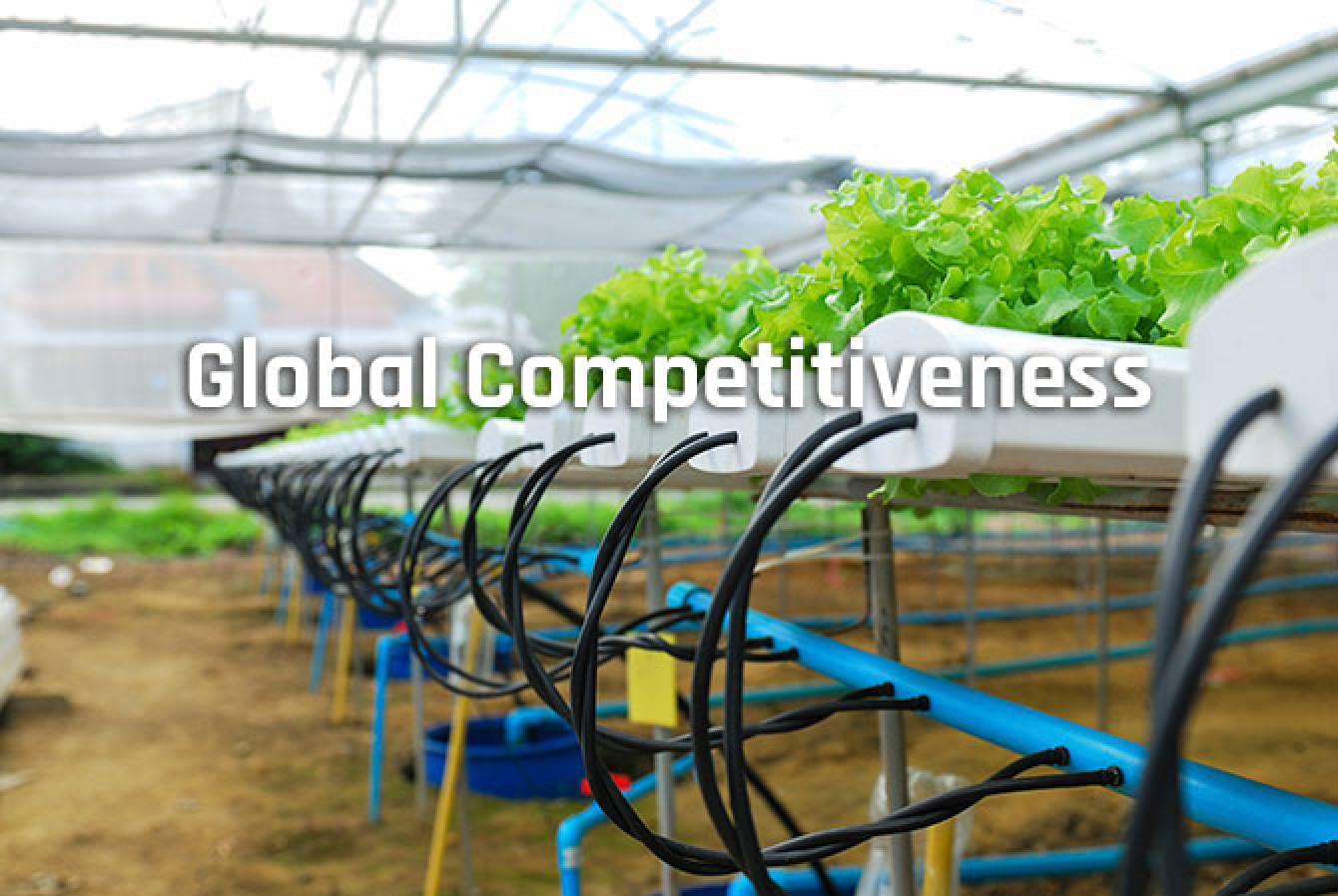 Global_competitiveness.jpg