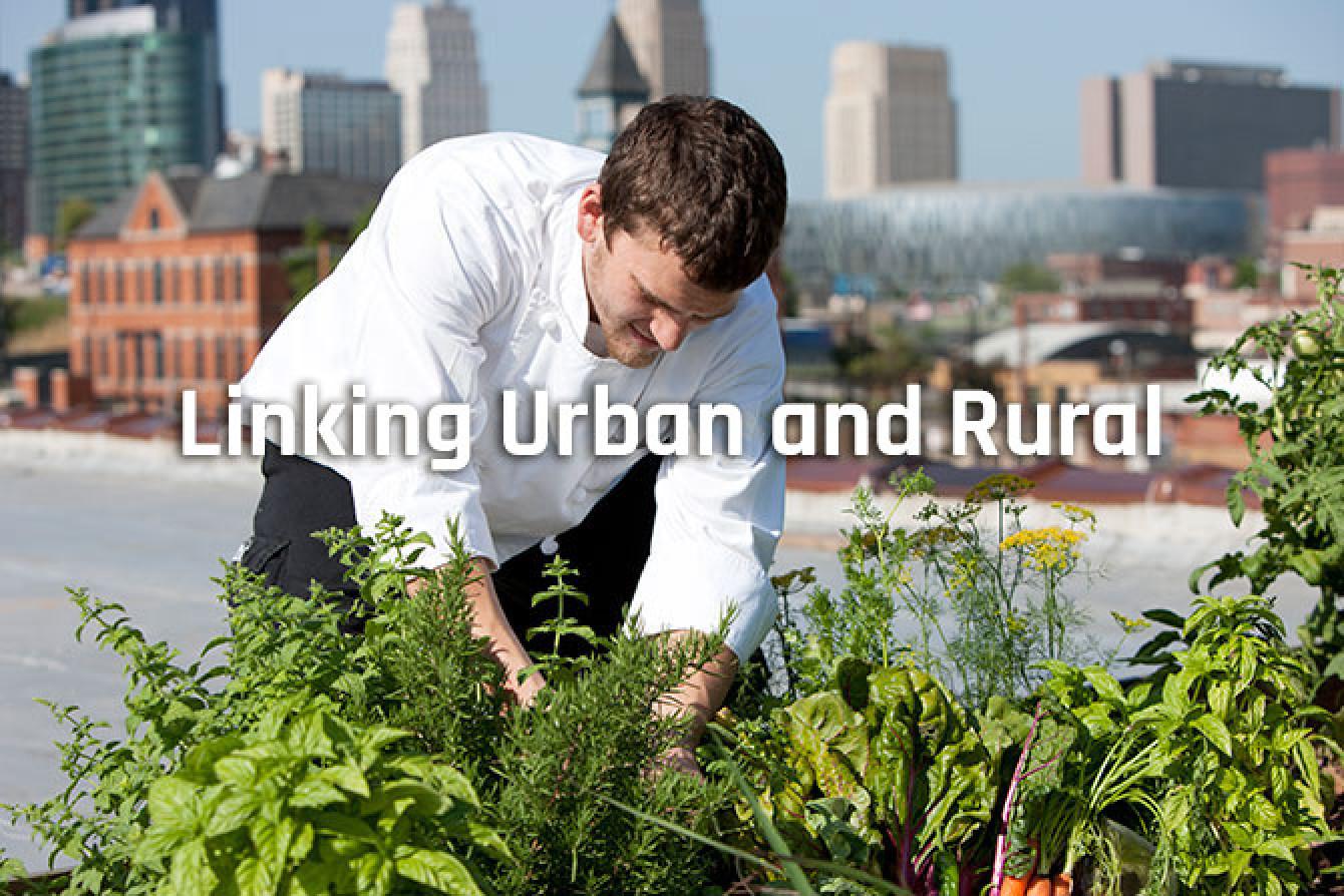 Linking_urban_and_rural.jpg