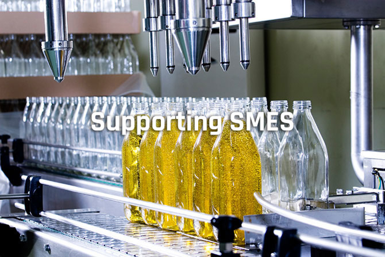 Supporting_SMES.jpg