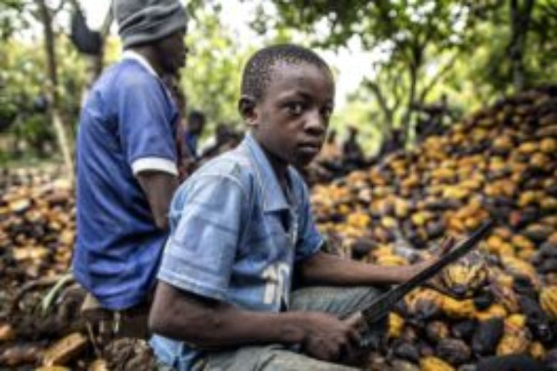 SumOfUs new sign petition : Stop cocoa slavery