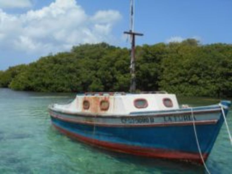 Slow Fish Caribbean: Cooperation, Peace and Sustainability for the Future of Fishing