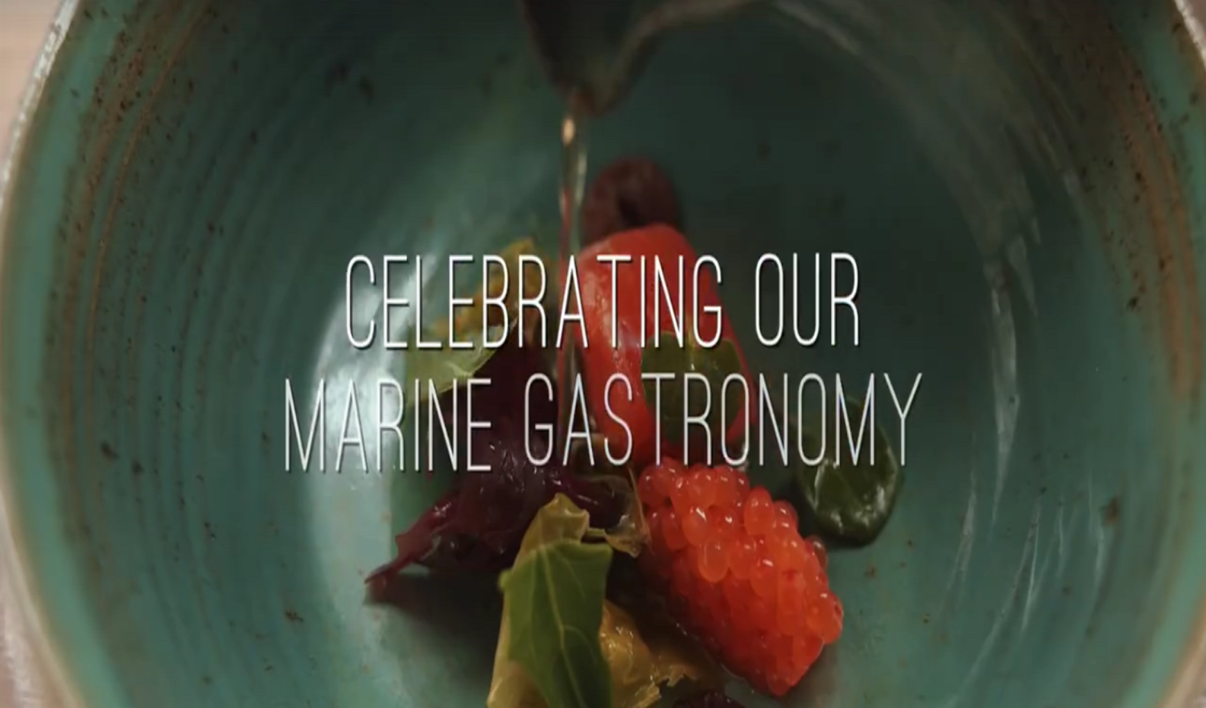 Sea Gastronomy at the Ocean Wealth Summit in Galway