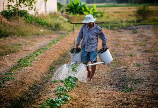 watering-watering-can-man-vietnam-162637-e1517389743831.jpeg