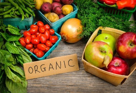 EU-auditors-to-scrutinise-organic-food-supply-chain_wrbm_large-e1519808867254.jpg