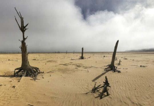 Cape Town's drought reveals the future of travel – sustainability should no longer be a niche, but the norm.