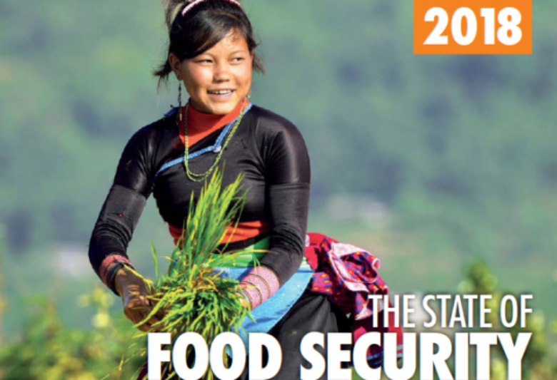 FAO: Hunger increases in the world for the third consecutive year