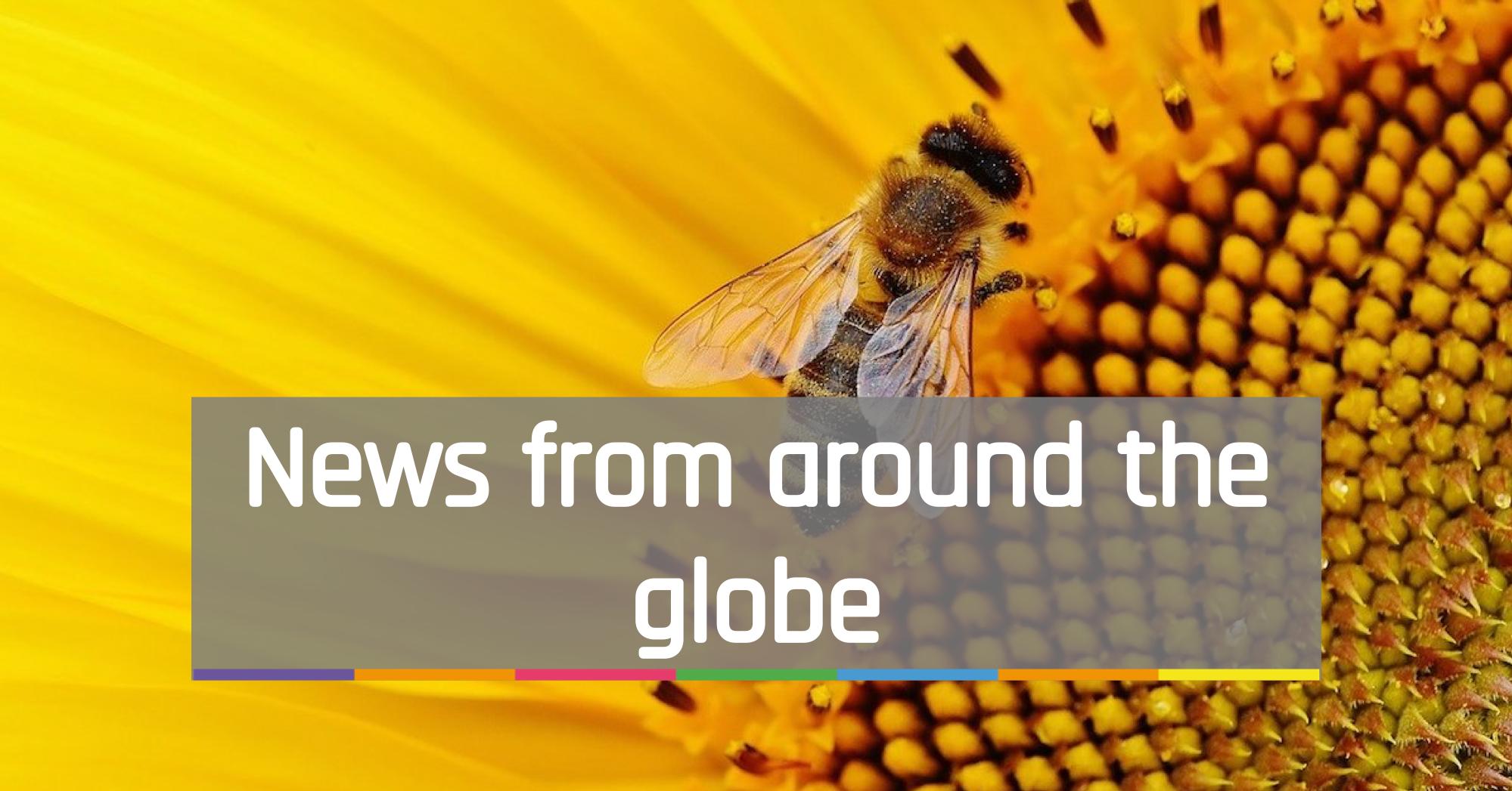 News from around the globe
