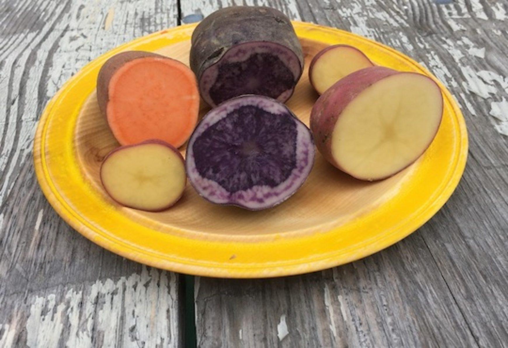 The marvelous potato at Trondheim's Credo