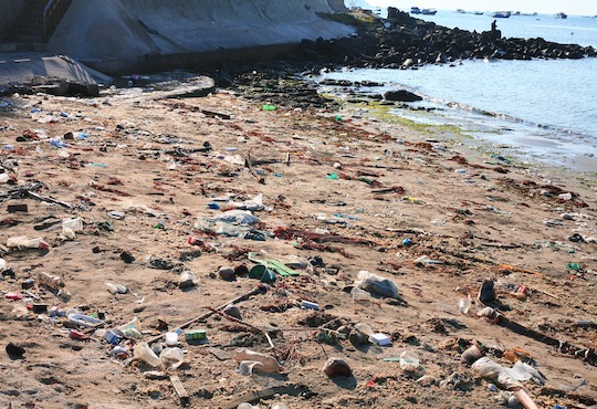Environmental Justice Impacts of Marine Litter and Plastic Pollution